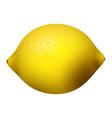 yellow lemon fruits s vector image