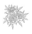 beautiful monochrome black and white bouquet vector image