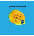 Golden Butterfly fish vector image