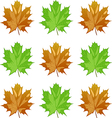 maple leaves4 vector image vector image
