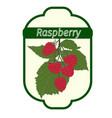 raspberry label vector image