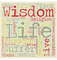 Wisdom text background wordcloud concept vector image vector image