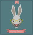 Hipster Bunny vector image