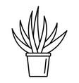 aloe housepot icon outline style vector image vector image