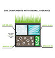 composition of the soil components of the earth vector image