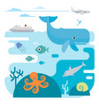 flat of sea and sea animals vector image