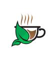 Herbal Tea Cup vector image vector image