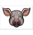 Pig head mascot vector image