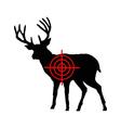 Red deer crosshair vector image vector image
