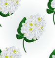 Seamless texture white rhododendron twig vector image vector image