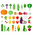 set vegetarian products flat vector image
