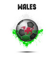 soccer ball in the color of wales vector image