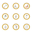 traumatology and orthopedic icons set cartoon vector image vector image