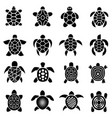 turtle logo top view icons set simple style vector image