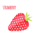 Abstract Colorful Watercolor Strawberry isolated vector image vector image