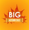 Big Autumn sale poster promotion banner vector image