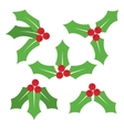 Christmas symbol Holly berry icon vector image vector image