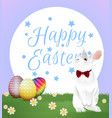 easter egg with bunny vector image