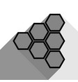 honeycomb sign black icon with two flat vector image