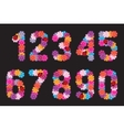 Numbers of flowers A set vector image vector image
