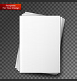 stack blank magazines template vector image