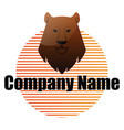 bear head in front striped circle and blank vector image vector image
