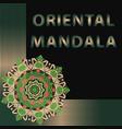 beautiful oriental mandala vector image vector image