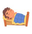 boy sleeping in his bed schoolboy daily routine vector image vector image