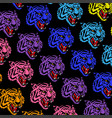 colorful tigers pattern vector image vector image