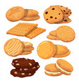 different cookies in cartoon style icons vector image vector image