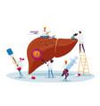 medical diagnosis hepatitis b world day cirrhosis vector image vector image