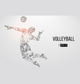 silhouette volleyball player vector image vector image