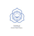 thymus - chakra of human body vector image vector image