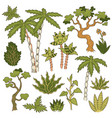 tropic plants set vector image