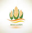 corn symbol vector image
