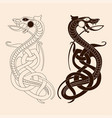 drawing a celtic dragon vector image vector image