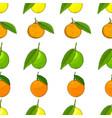 citrus seamless background lemons tangerines vector image