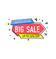 big sale sticker in trendy linear style vector image vector image
