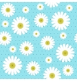 chamomile seamless pattern vector image