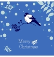 Christmas card with bullfinch and rowan branch vector image vector image
