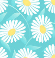 Daisy flower in a seamless pattern vector image