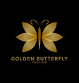 golden butterfly logo icon design template vector image vector image