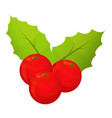 holly berry icon isometric style vector image