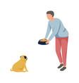 man feeding pugdog vector image