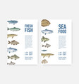 set flyer or poster templates with fish and vector image vector image