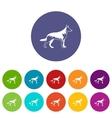 Shepherd dog set icons vector image vector image