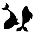 stylized whale silhouette vector image