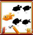 find the correct shadow cartoon funny fish educa vector image