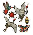 ladybug butterfly beetle crane vector image vector image