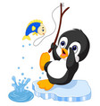 penguin fishing vector image vector image